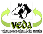 http://www.veda-bolivia.org/